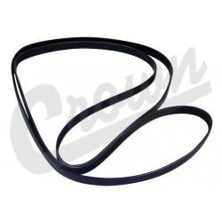 belt serpentine